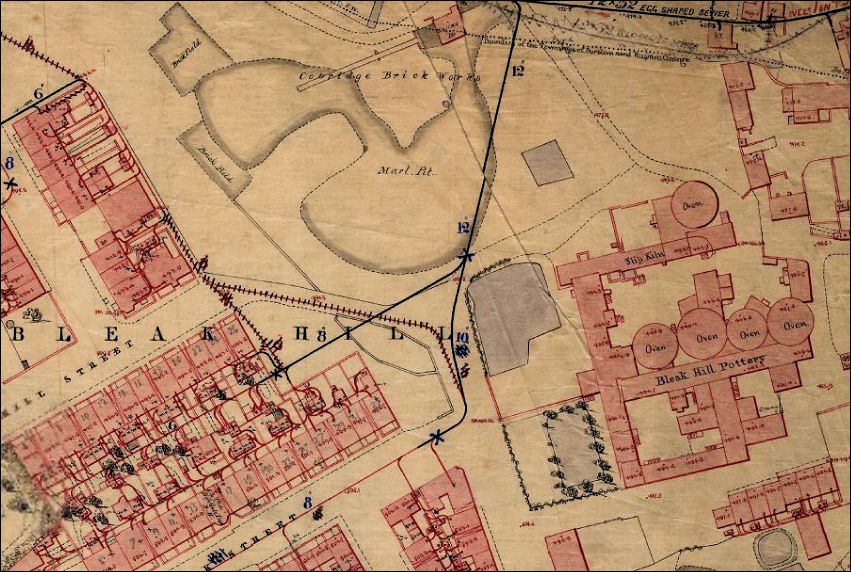 early 1851 map  showing the Bleak Hill Works