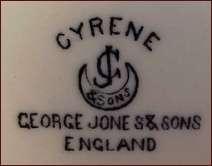George Jones Amp Sons