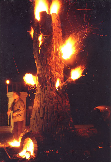 Fire Trees Inspired By The Potteries Bottle Kilns